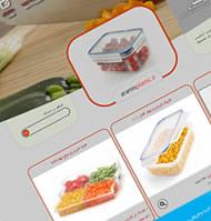 نمونه کارهای طراحی وب سایت